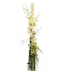 Lumanari nunta dendrobium alb orhidee phalaenopsis alb