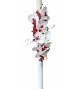 Lumanari nunta phalaenopsis mocara