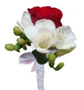 Cocarda frezii trandafir