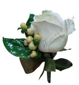 Cocarda trandafir alb hipericum