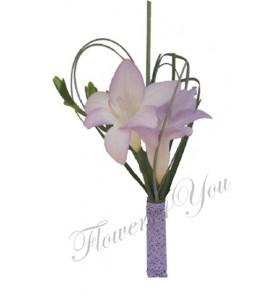 Cocarde frezia lila