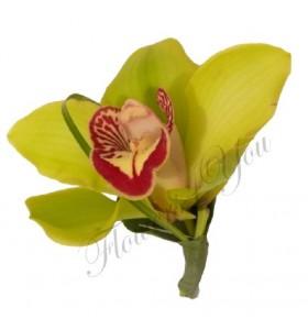 Cocarde orhidee verde