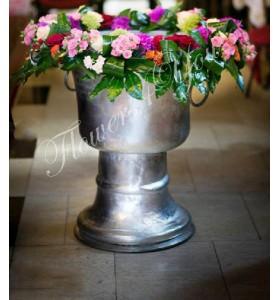 Cristelnita botez miniroza hortensia trandafiri
