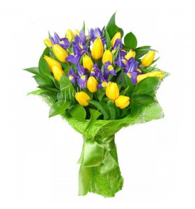 Buchet lalele galbene iris mov