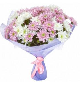 Buchete crizanteme albe roz