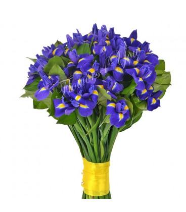 Buchet iris