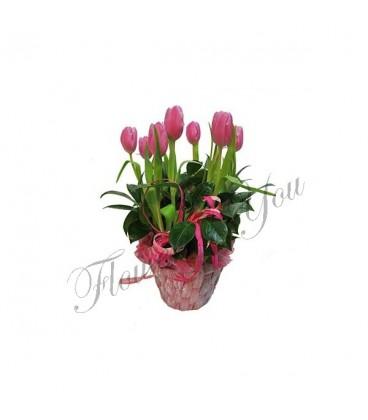 Aranjament floral lalele