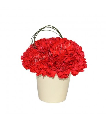 Aranjamente florale garoafer rosii