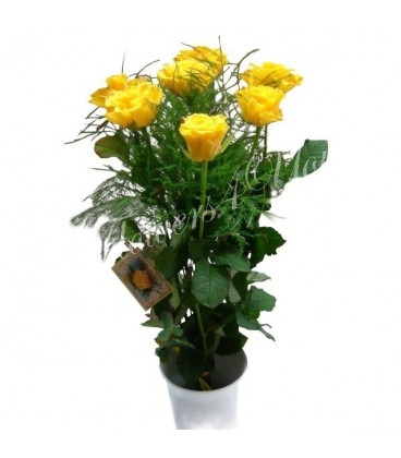 Aranjament 7 trandafiri galbeni