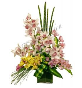 Aranjament orhidee