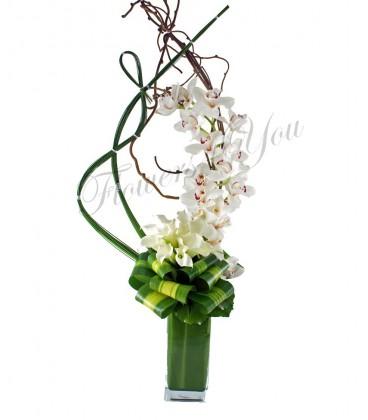 Aranjament orhidee cale