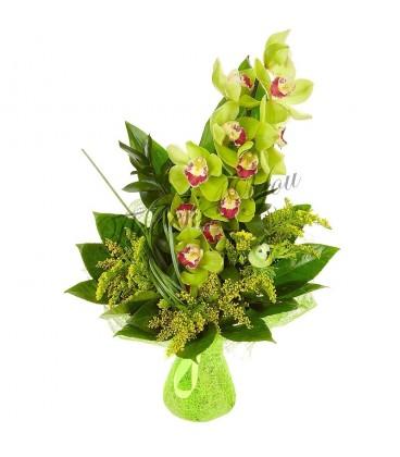 Aranjament orhidee solidago