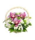 Aranjamente florale orhidee grena frezii