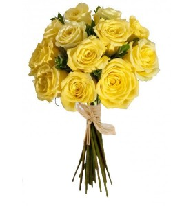 Buchet 13 trandafiri galbeni