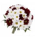 Pachet nunta crizantema