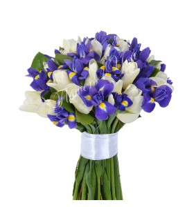 Buchet iris lalele albe
