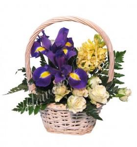 Aranjament floral zambile iris miniroze