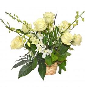 Aranjamente florale trandafiri dendrobium